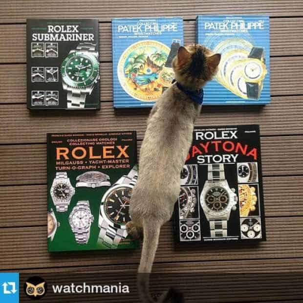 Qui porte quelles montres de luxe?